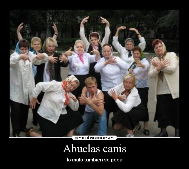 Abuelas canis -
