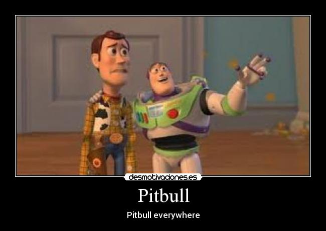 Pitbull - Pitbull everywhere