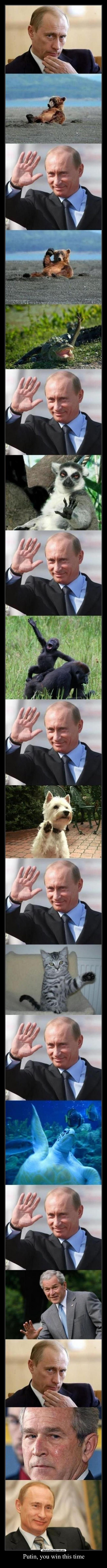 Putin, you win this time -