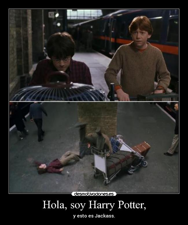 carteles harry potter jackass desmotivaciones