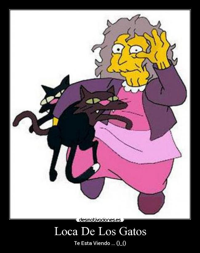 carteles gatos loca los simpsons esta viendo desmotivaciones