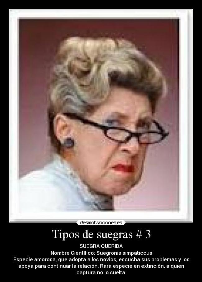 Imagenes Chistosas De Suegras Para Facebook Nocturnar