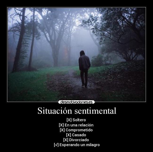 Carteles y Desmotivaciones de situacion sentimental clanvirus ...