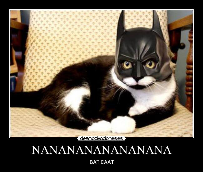 NANANANANANANANA - BAT CAAT