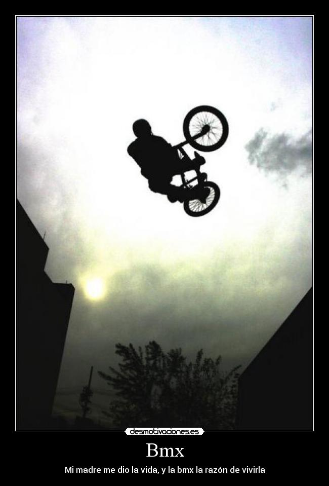 animal bmx wallpaper - photo #41