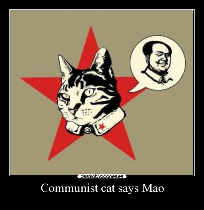 Communist cat says Mao -