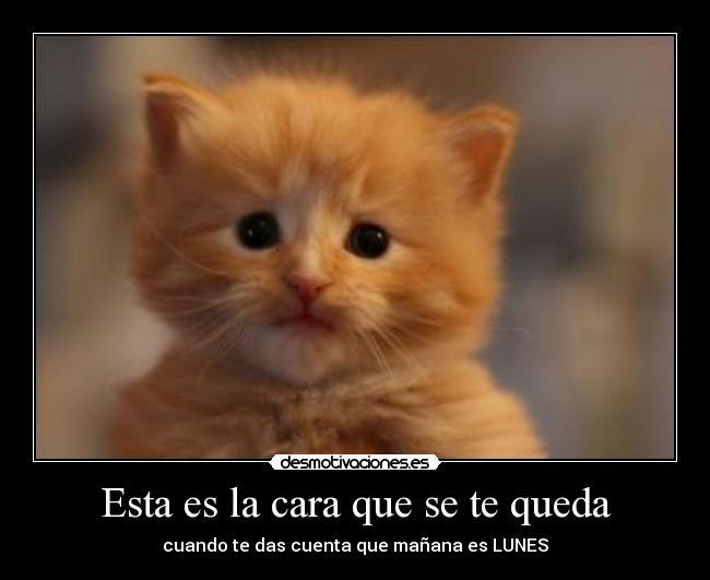Imagenes desmotivaciones.es