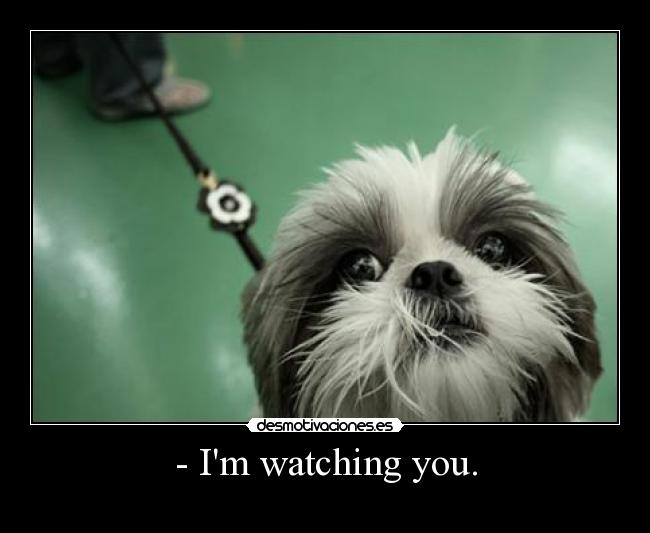 - Im watching you. -