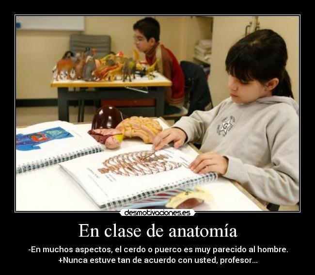 En clase de anatomía | Desmotivaciones