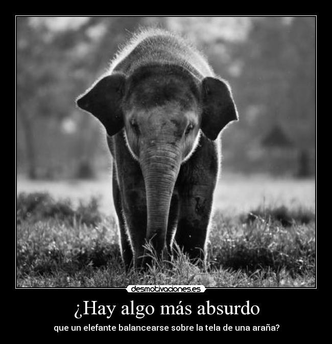 Hay algo ms absurdo - que un elefante balancearse sobre la tela de una araa?