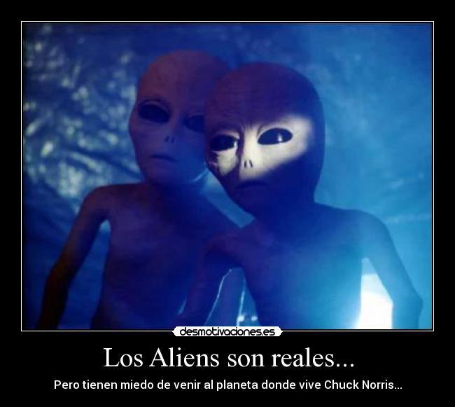 Los Aliens son reales | Desmotivaciones