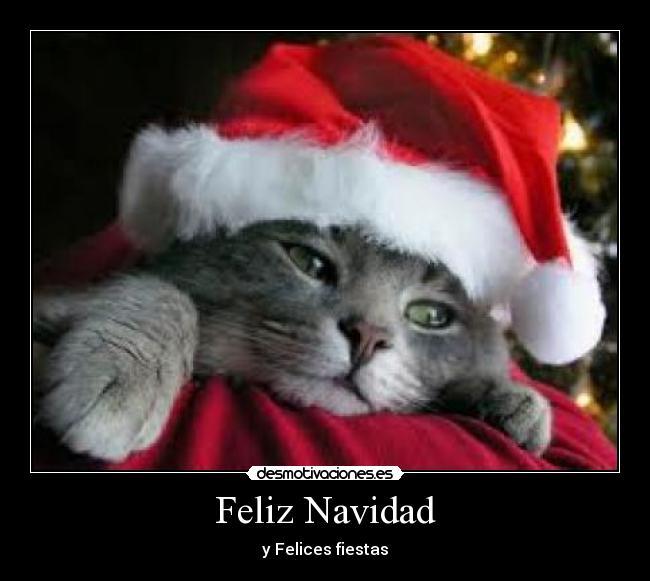 Frases Negativas De La Navidad.Feliz Navidad Desmotivaciones