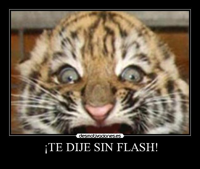 ¡TE DIJE SIN FLASH! -