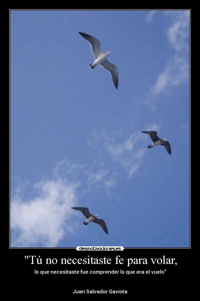 Tú No Necesitaste Fe Para Volar Desmotivaciones