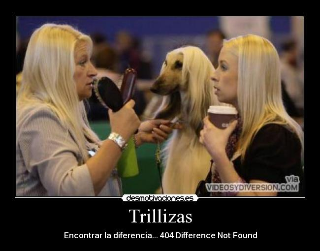 Trillizas - Encontrar la diferencia... 404 Difference Not Found