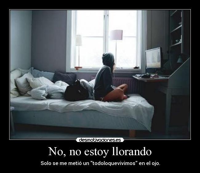 Download No No Estoy Llorando - Desmotivaci