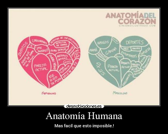 Anatomía Humana | Desmotivaciones