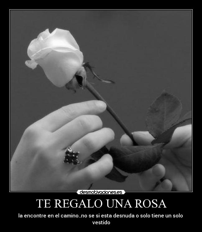 te regalo una rosa la encontre en el camino aldeanos
