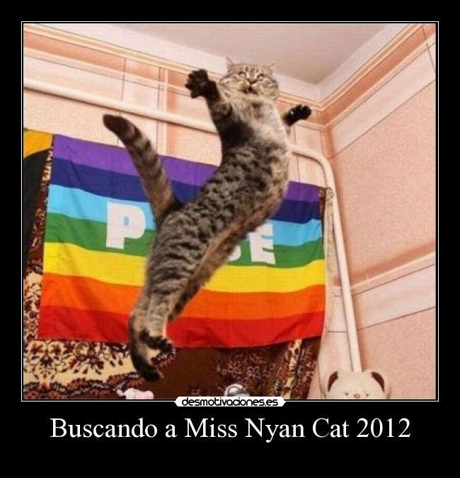 Buscando a Miss Nyan Cat 2012 -