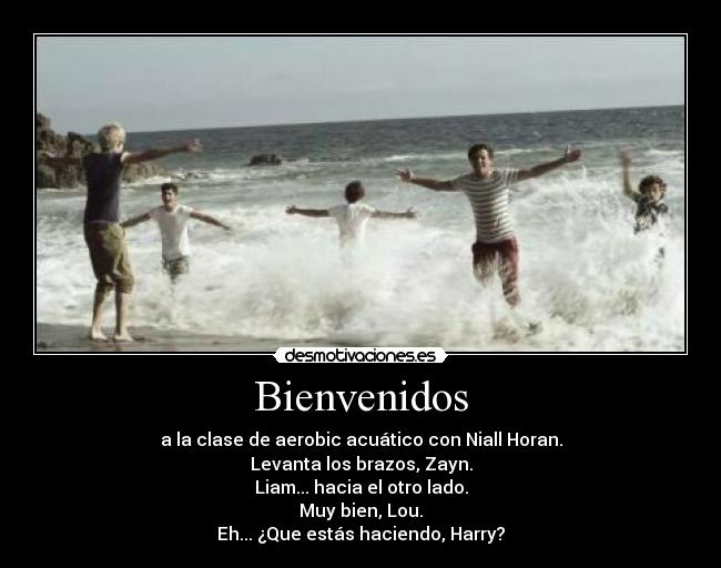 carteles one direction clase aerobic acuatico lol niall harry louis zayn liam desmotivaciones