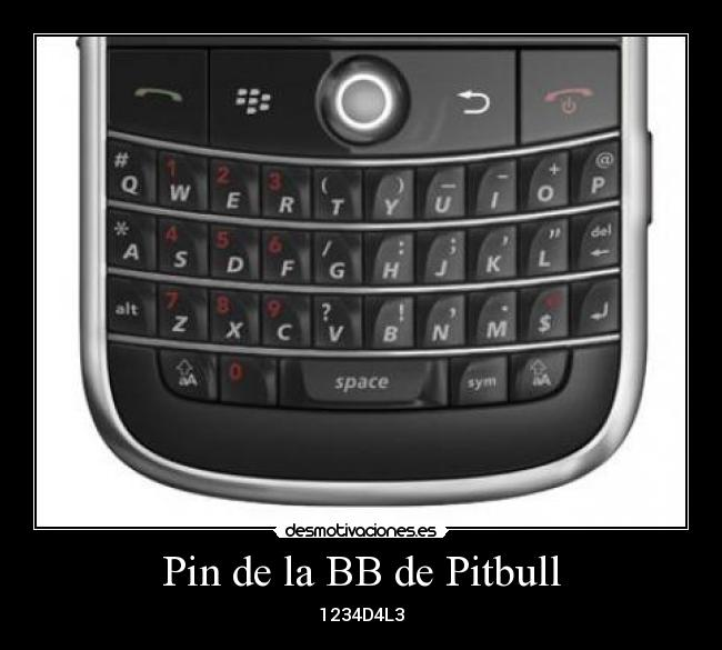 Pin de la BB de Pitbull - 1234D4L3