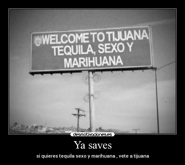 Ya saves - si quieres tequila sexo y marihuana , vete a tijuana