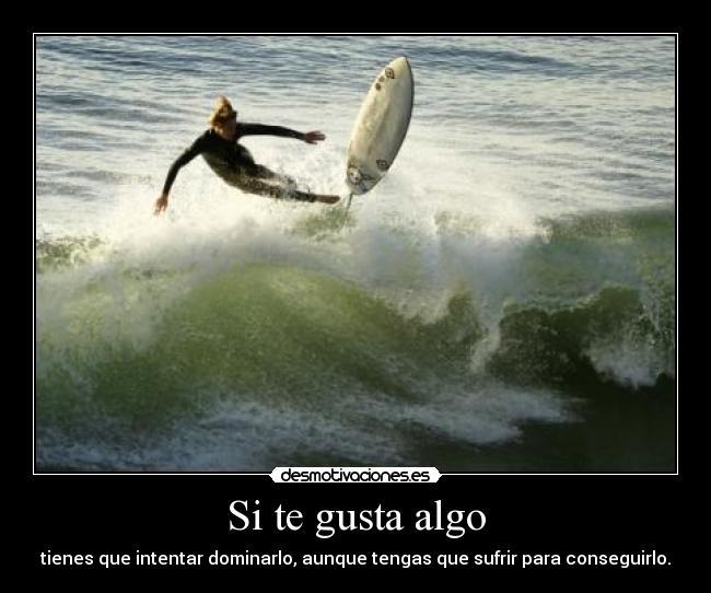 carteles surf bodyboard ccncarlos surf surfing surfree sufrir desmotivaciones