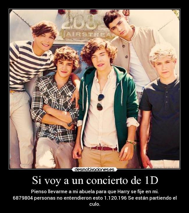 Si voy a un concierto de 1D carteles One Direction Directioners Harry Styles desmotivaciones
