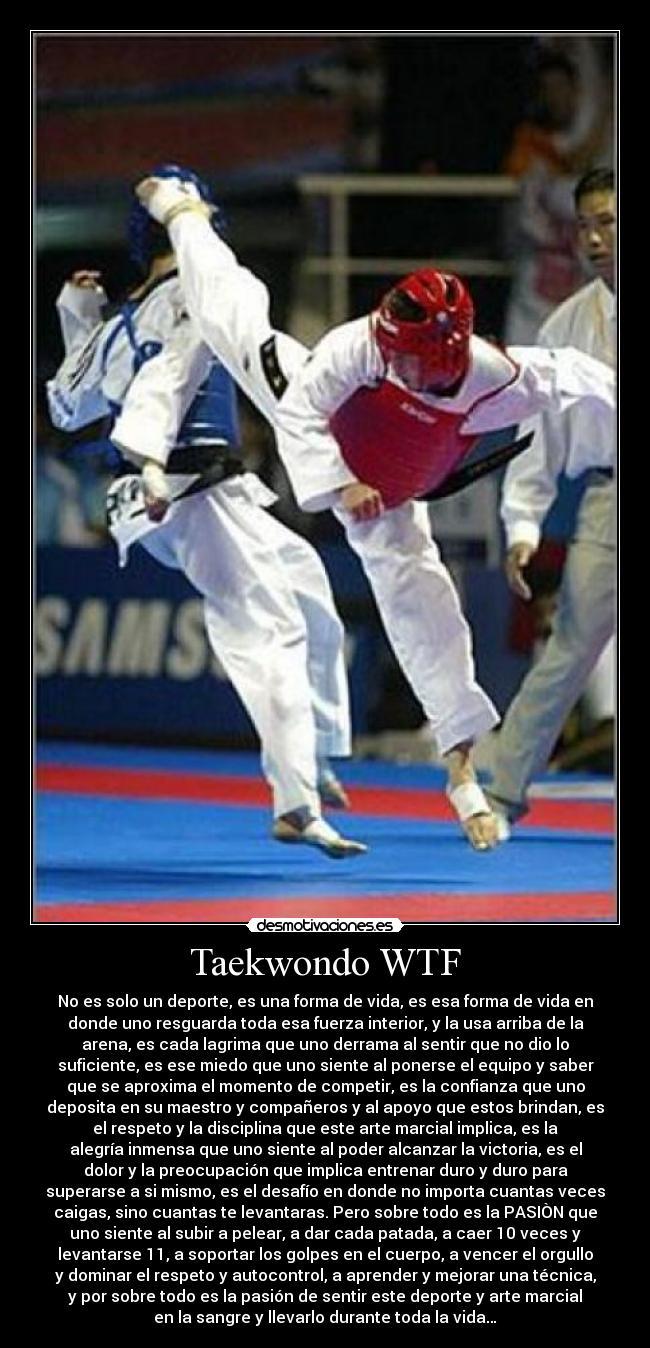 Carteles deporte taekwondo wtf patadas pelea desmotivaciones