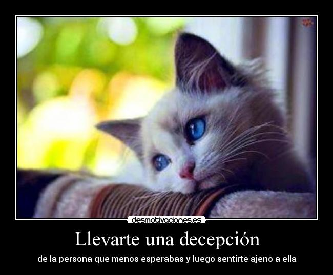 Decepción - significado de decepción diccionario