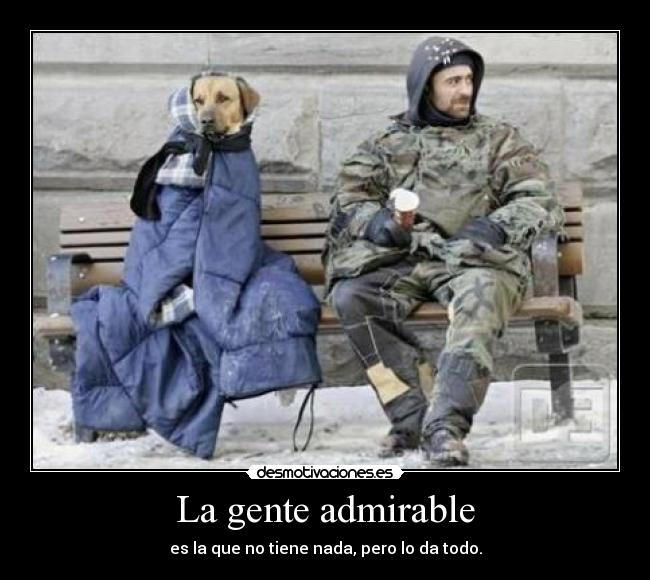 carteles vorooo gente admirable more and more dogs desmotivaciones
