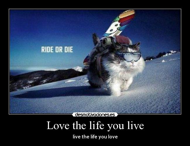 Love the life you live - live the life you love