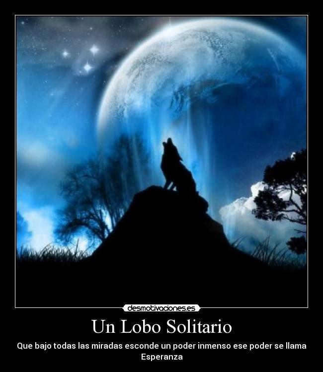 Propuestas para el Próximo ROL Social - Página 3 Lobo_solitario