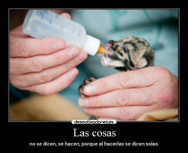 http://img.desmotivaciones.es/201202/qw_3.jpg