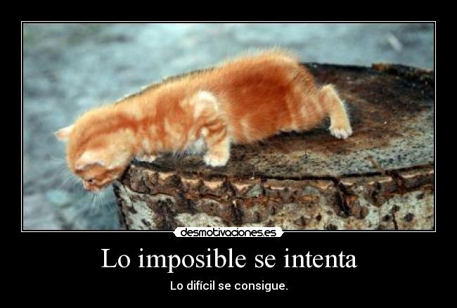 Lo imposible se intenta - Lo difícil se consigue.