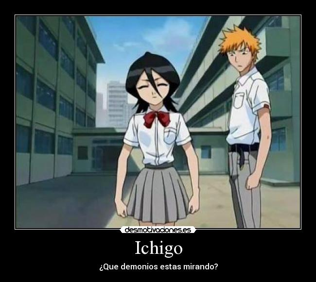 carteles ichigo rukia bleach anime desmotivaciones