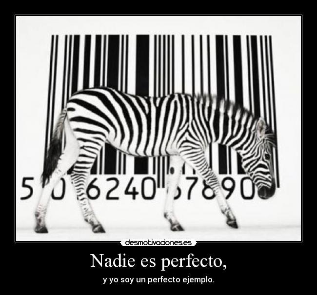 Nadie es perfecto, - y yo soy un perfecto ejemplo.