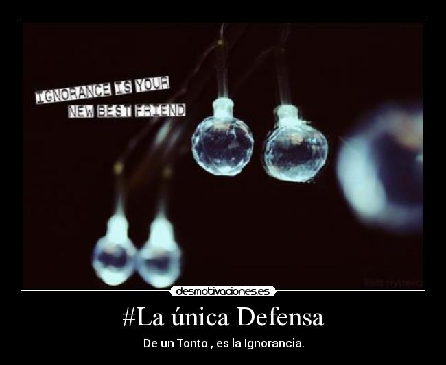 #La única Defensa - De un Tonto , es la Ignorancia.