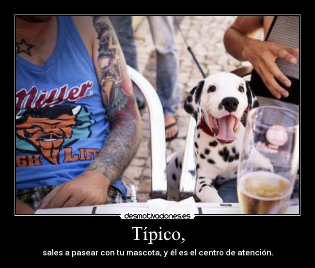 carteles intruders jimenezhope crazyclub mascotas tipico desmotivaciones