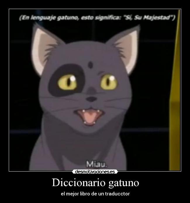 Diccionario gatuno carteles gato code geass si su majestad miau desmotivaciones