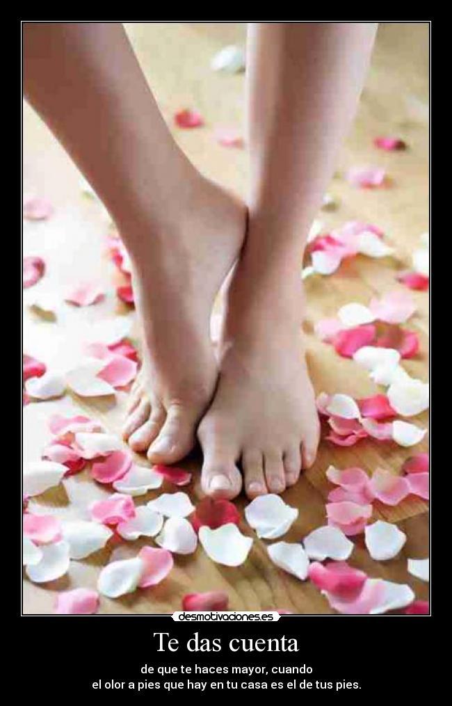 Фотт женских ступней 12 фотография