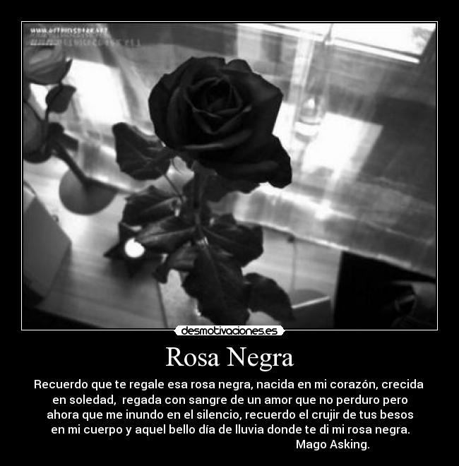 Frases Con Imagenes De Rosas Negras