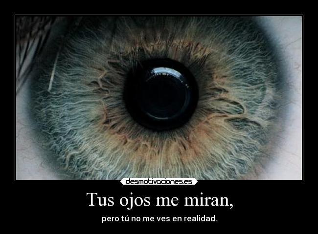 carteles edelweis una amante los ojos bonitos desmotivaciones