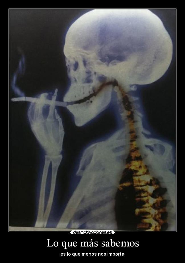 carteles todos sabemos que fumar mata seguimos fumando bueno fumo pero fin luul desmotivaciones