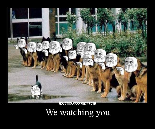 We watching you -