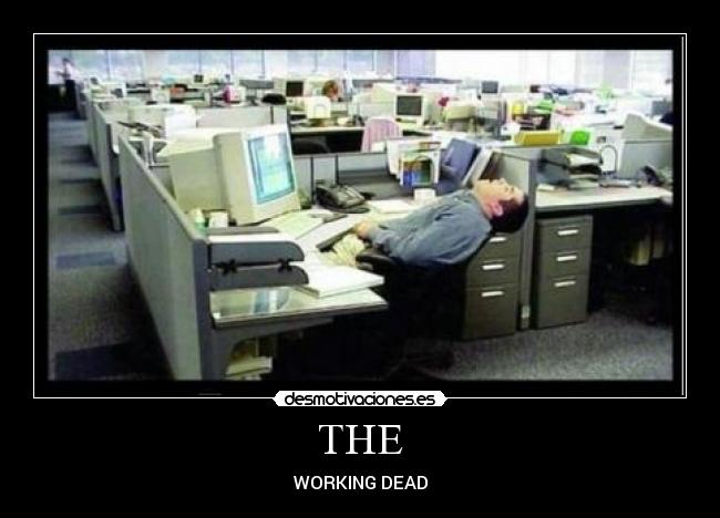 THE - WORKING DEAD
