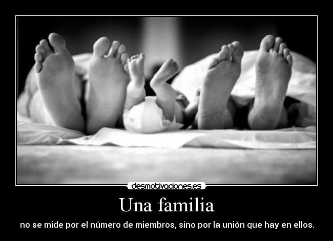 carteles familia are happy family jajajaja desmotivaciones