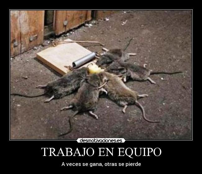 Trabajo en equipo desmotivaciones - Cazar ratones en casa ...