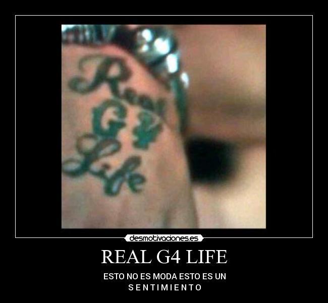 carteles realg4life mundial nengo flow ibanez kevin realg4life vol siggy what desmotivaciones