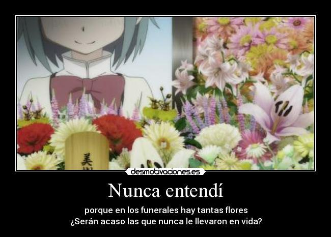 carteles anime madoka sayaka por que llevamos flores los funerales cuando las personas estan aqui desmotivaciones